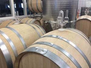 Här jäser druvor till vin i klassiska ekfat